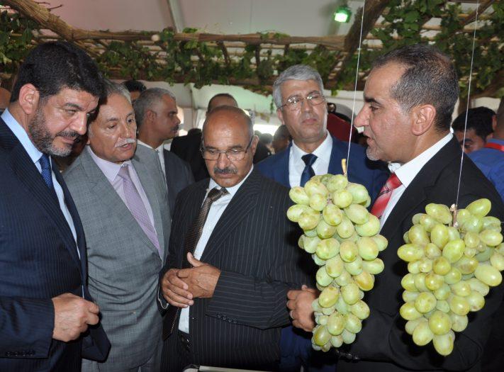 عنب جماعة الشراط يستقطب وزراء وجمعويين في نسخته العاشرة