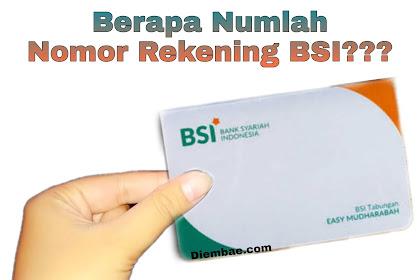 Berapa Jumlah Nomor Rekening Bank BSI?