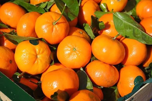 Mandarin orange nutrition 2021
