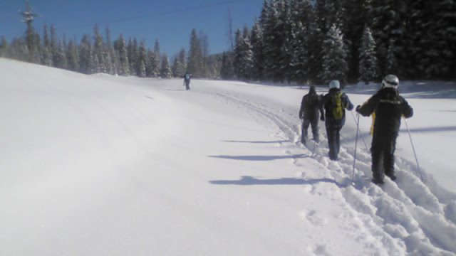 a group of snowshoers following the trail