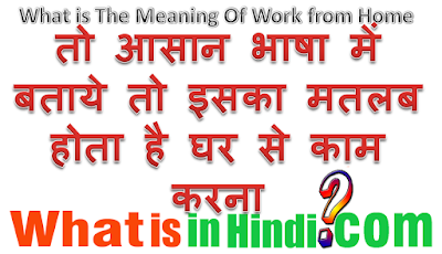 What is the meaning of Work from Home in Hindi