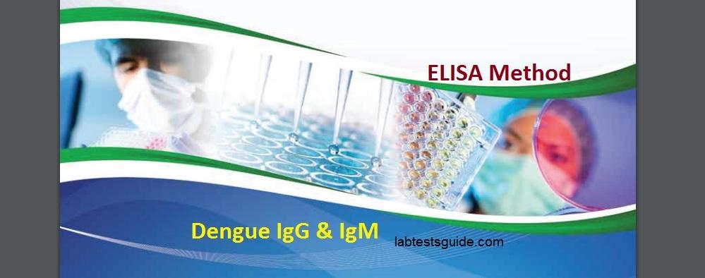 IgG & IgM Elisa