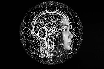 How do our Brains Make Lecture II हमारे दिमाग कैसे भाषण प्रक्रिया करते हैं