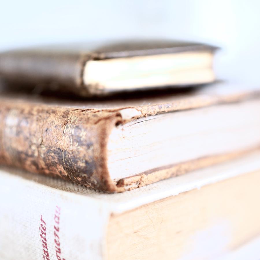 Reto LIBROS RESCATADOS 2021 — ELEEA books