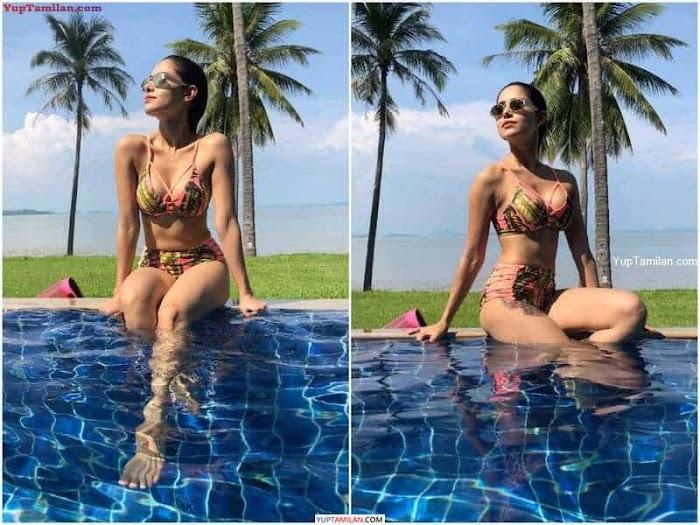 Nushrat Bharucha Navel Photos | Sexy in Bikini, Bra, Swimsuit Images