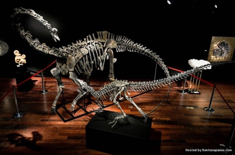 Rangka Dinosaur berharga RM6 Juta