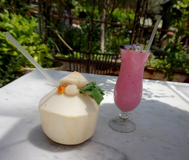 grounds of alexandria smoothie top 10 things to do in sydney travel guide diary