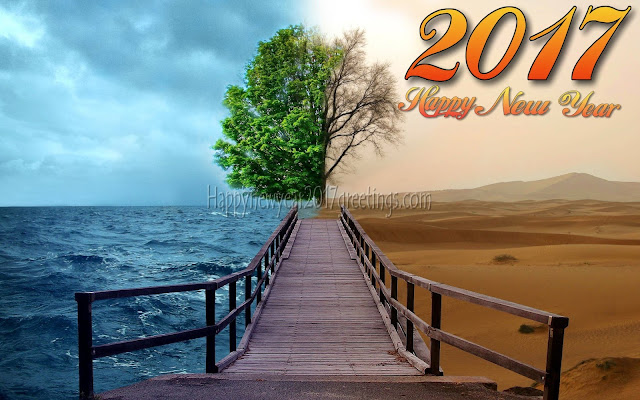 Happy New Year 2017 HD Nature Wallpapers  For Desktop
