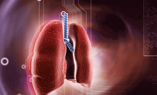 كيف يتم علاج التهاب الشعب الهوائية وما هي أسبابها