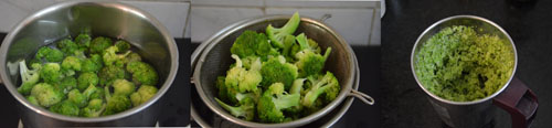 blanched broccoli