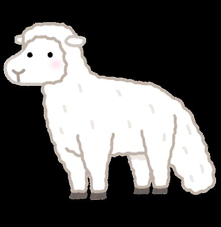 脂肪尾のある羊のイラスト