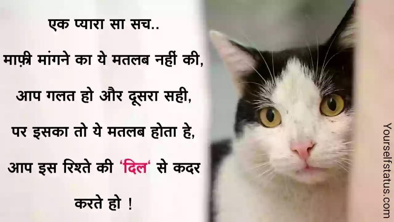 Mafi-status-in-hindi