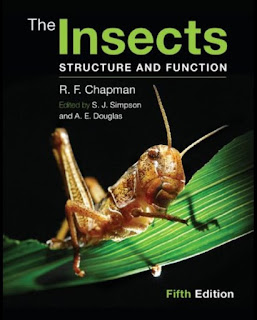 The Insects – Structure and Function 5th Edition