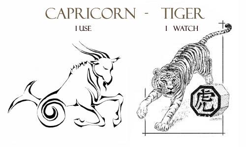 Capricorn Tiger Personality Traits | Capricorn Life - Capricorns Rock!