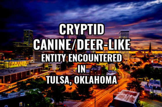 News & Notes: Cryptid Canine/Deer-Like Entity Encountered in Tulsa, Oklahoma (Sketch)