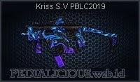 Kriss S.V PBLC2019