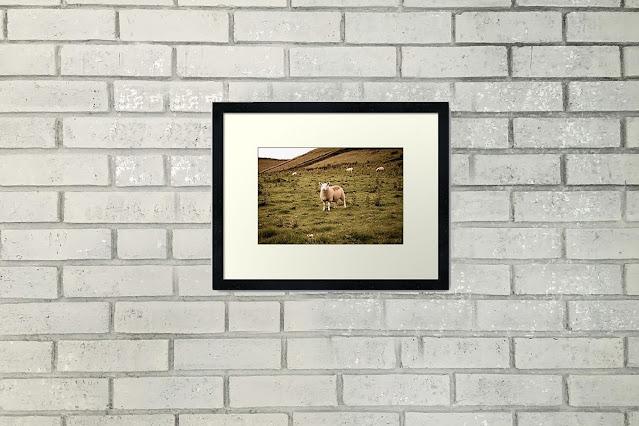 Scottish Highlands Travel Art Print Home Decor