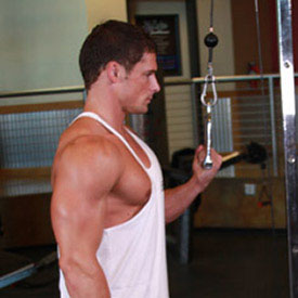 Triceps Unilateral