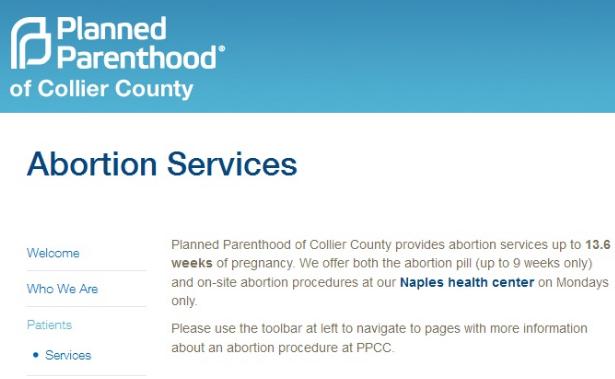 Dokumen Who Tentang Aborsi