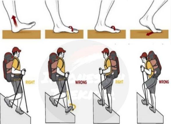 Teknik Berjalan Mendaki Serta Menuruni Gunung