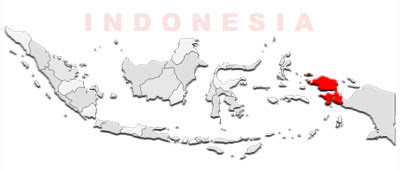 image: West Papua Map location