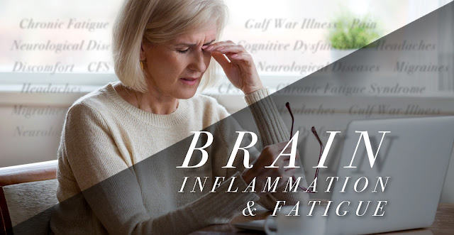 Brain Inflammation and Fatigue in Functional Neurology | El Paso, TX Chiropractor