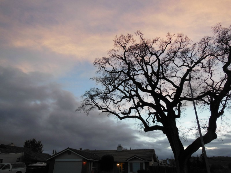 Sky Journal of Day with Sporadic Showers
