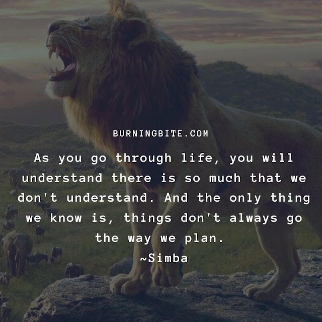 As you go through life, you will understand there is so much that we don't understand. And the only thing we know is things don't always go the way we plan. ~Simba