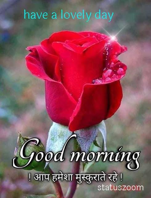 good morning gulab ka phool