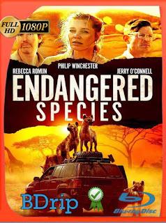 Endangered Species (2021) BDRip [1080p] Latino [GoogleDrive] PGD