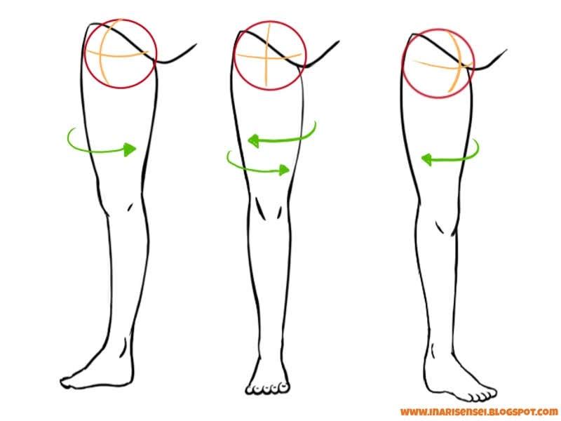rotation de la jambes au niveau du bassin