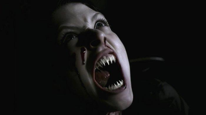 Gara-gara Kemunculan Vampir, PBB Menarik Stafnya dari Afrika