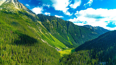 Mountains, Forest, Valley, Green, Landscape