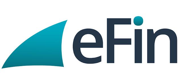 EFIN untuk lapor pajak online