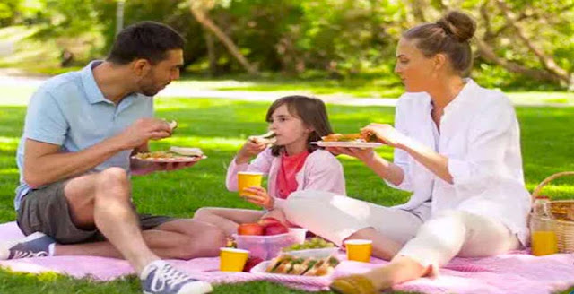 From which language does picnic come from?