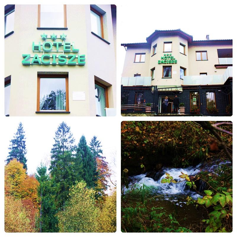 Hotel Zacisze- miejsce gdzie odpoczniesz i nabierzesz sił.