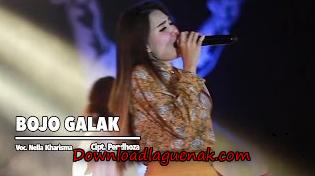 Download Lagu Nella Kharisma Bojo Galak Mp3