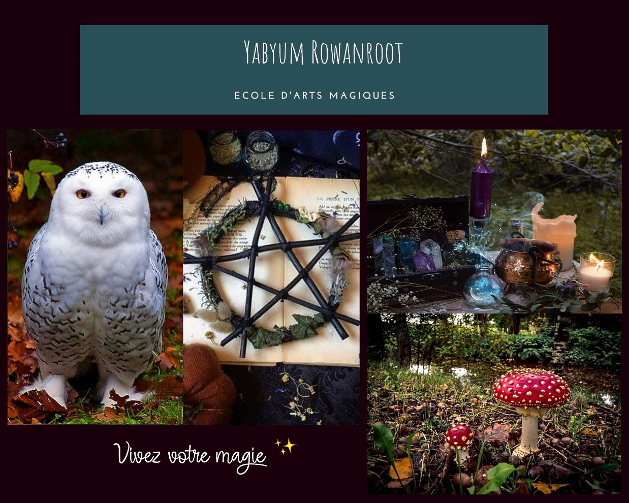 ☆☾ °Yabyum Rowanroot  ☾Ecole d' Arts Magiques  ©  all rights reserved ° ☆. *  ☆ Site Officiel