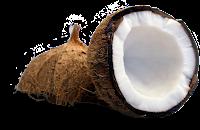 O óleo de coco é rico em ácidos graxos saturados e monoinsaturados