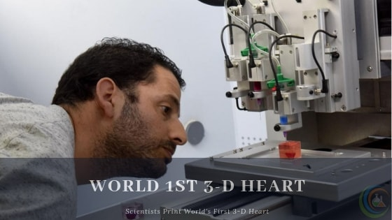 Scientists Print World's First 3-D Heart
