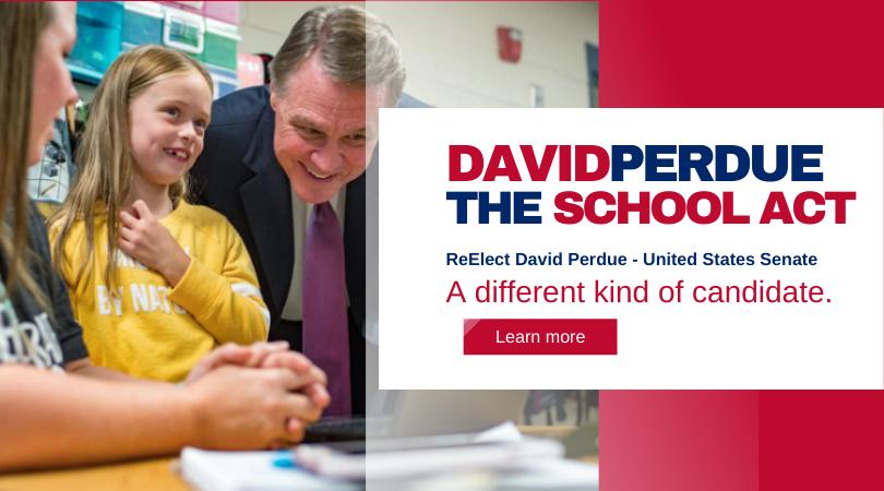 Re-Elect David Perdue
