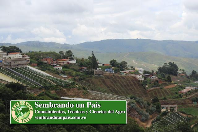 zona agrícola