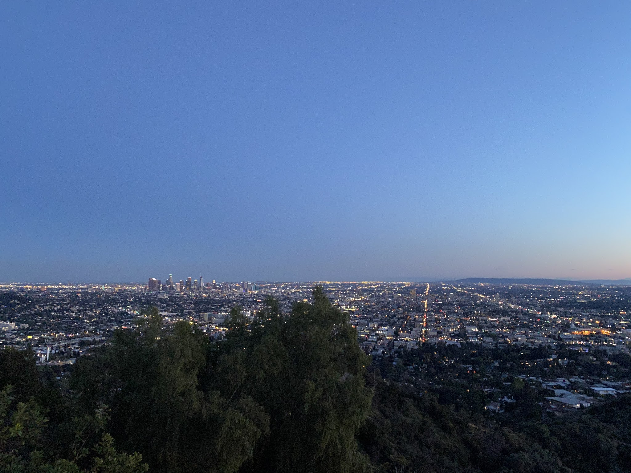 Los Angeles at Night | www.biblio-style.com