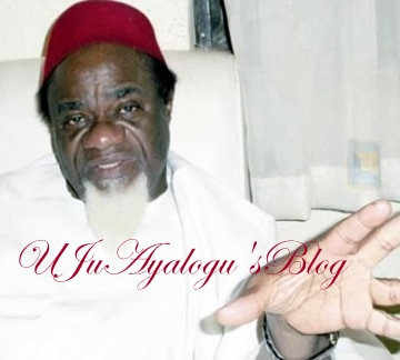Ezeife reveals what will happen to Fulani if Nigeria breaks up