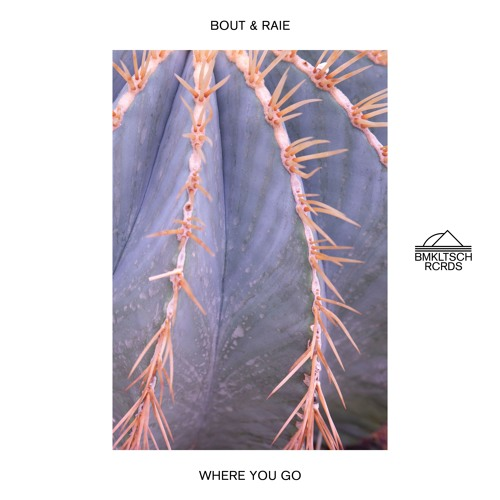 Bout & Raie Drop New Single 'Where You Go'