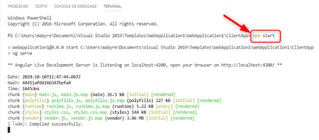 """Exécution de """"npm start"""" dans le Terminal de Visual Studio Code"""