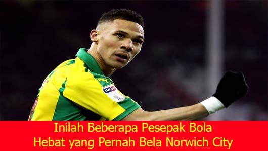 Inilah Beberapa Pesepak Bola Hebat yang Pernah Bela Norwich City