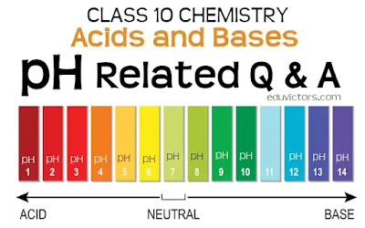 CBSE Class 10 - Chemistry - pH related Questions and Answers (Acids and Bases) (#eduvictors)(#class10Chemistry)(#class10NCERT)(#cbseClass10)