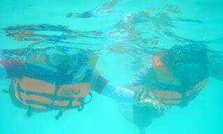Snorkeling bareng di Maratua