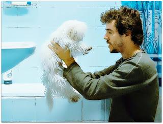 Fotografia de Martín (Javier Drolas) e o Cachorro em Medianeras